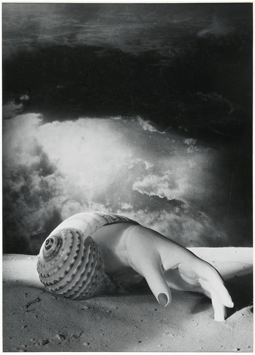Dora-Maar-Untitled-Hand-Shell